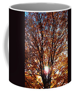 Fall Light Coffee Mug