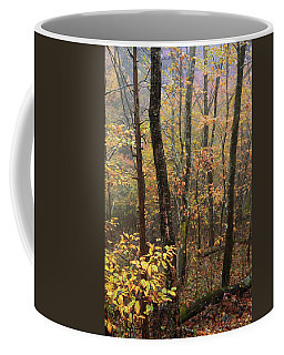 Fall Mist Coffee Mug