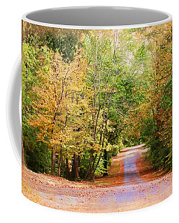 Coffee Mug featuring the photograph Fall Pathway by Judy Vincent