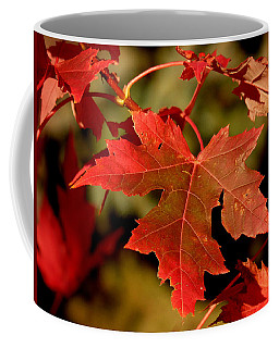 Fall Red Beauty Coffee Mug
