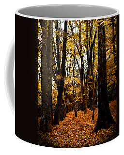 Fall Scene In Bidwell Park Coffee Mug
