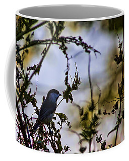 Coffee Mug featuring the photograph Fall Silhouette by Gary Holmes