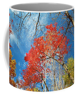 Fall Sky Coffee Mug by Patrick Shupert
