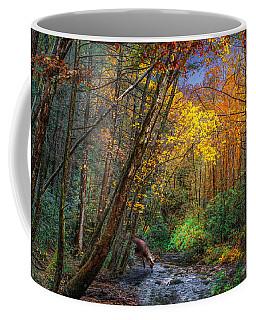 Fall Solitude Coffee Mug