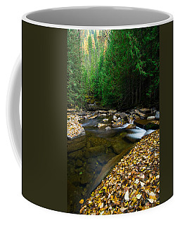 Fallen Autumn Color Leaves And Forest Coffee Mug