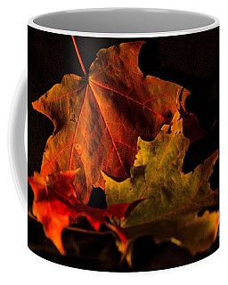 Coffee Mug featuring the photograph Fallen Leaves by Judy Wolinsky