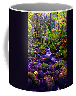 Fallen Leaves On The Rocks Coffee Mug