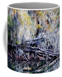 Coffee Mug featuring the photograph Fallen Reflection by Lana Trussell
