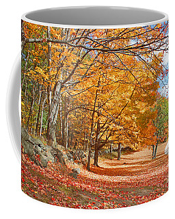 Coffee Mug featuring the photograph Falling Leaves On The Road To Bentley by Rita Brown