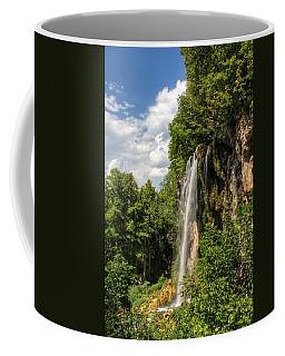 Falling Springs Falls Coffee Mug