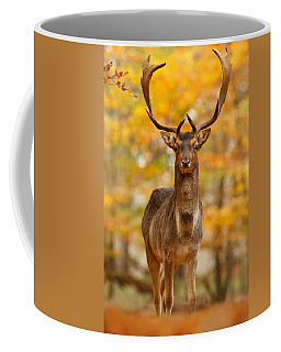 Fallow Deer In Autumn Forest Coffee Mug