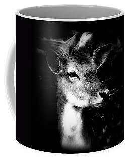 Fallow Deer Portrait Black And White Coffee Mug