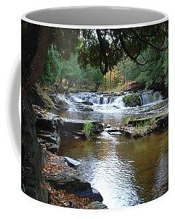 Falls River Coffee Mug