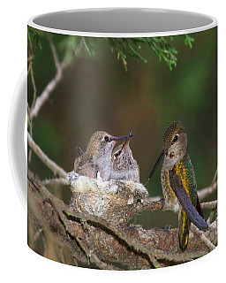 Coffee Mug featuring the photograph Family Love by Beth Sargent