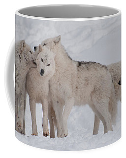Coffee Mug featuring the photograph Family Ties by Bianca Nadeau