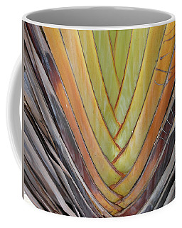 Fan Palm Trunk Coffee Mug by Kay Gilley