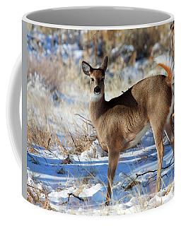 Coffee Mug featuring the photograph Fancy Pants by Jim Garrison