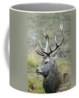 Stag Party The Series Father To Be. Coffee Mug by Linsey Williams