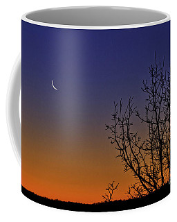 Favorite Moon Coffee Mug