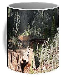 Fawn Front Yard Divide Co Coffee Mug
