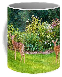 Fawns In The Afternoon Sun Coffee Mug