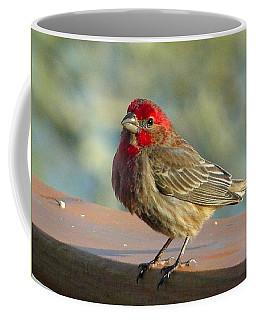 Feathered Friend Coffee Mug