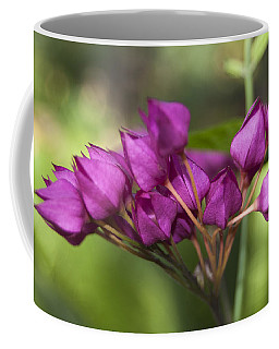 Coffee Mug featuring the photograph February Color by Penny Lisowski