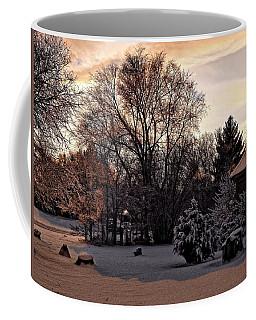 Coffee Mug featuring the digital art February Evening Light by Aliceann Carlton