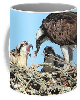 Coffee Mug featuring the photograph Feeding Time by Geraldine DeBoer
