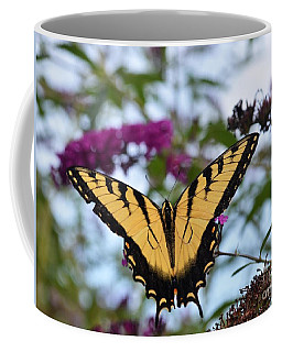 Coffee Mug featuring the photograph Feeling Pretty II by Judy Wolinsky