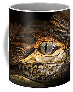Feisty Gator Coffee Mug
