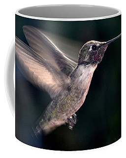 Coffee Mug featuring the photograph Male Anna In Flight by Jay Milo