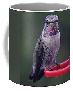 Coffee Mug featuring the photograph Female Anna Posing For Cameraman by Jay Milo