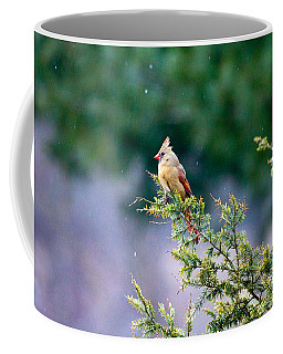 Coffee Mug featuring the photograph Female Cardinal In Snow by Eleanor Abramson