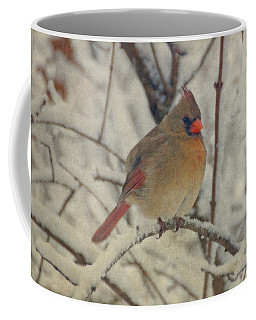 Female Cardinal In The Snow II Coffee Mug by Sandy Keeton