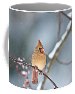 Female Cardinal On Cherry Tree In Snow Coffee Mug