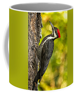 Female Pileated Woodpecker No. 2 Coffee Mug