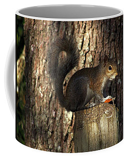 Coffee Mug featuring the photograph Fence Post Squirrel  by Chris Mercer