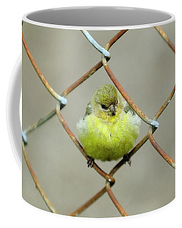 Coffee Mug featuring the photograph Fence Sitter by Arthur Fix