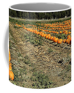 Fencing The Pumpkin Patch Coffee Mug
