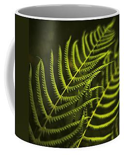 Coffee Mug featuring the photograph Fern by Bradley R Youngberg
