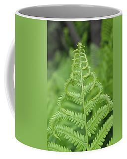 Fern Coffee Mug by Tiffany Erdman