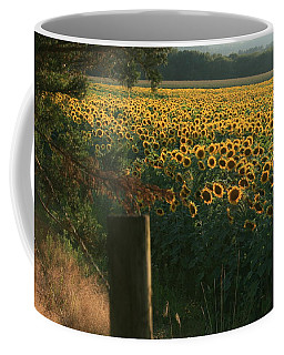 Field Dreams No.2 Coffee Mug