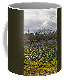 Coffee Mug featuring the photograph Field Of Color 2 by Belinda Greb