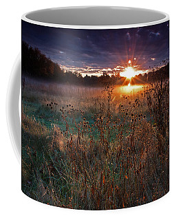 Field Of Dreams Coffee Mug by Suzanne Stout