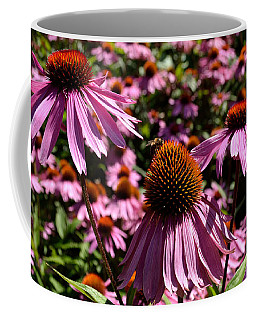 Field Of Echinaceas Coffee Mug