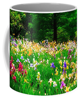 Field Of Iris Coffee Mug