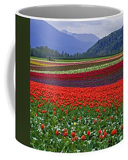 Field Of Tulips Coffee Mug by Jordan Blackstone