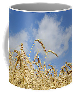Field Of Wheat Coffee Mug by Charles Beeler