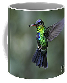 Fiery-throated Hummingbird..  Coffee Mug by Nina Stavlund